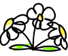 flower2tabs